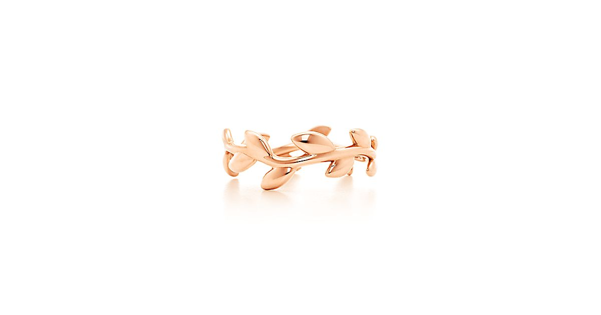 Paloma Picasso 174 Olive Leaf Narrow Band Ring In 18k Rose
