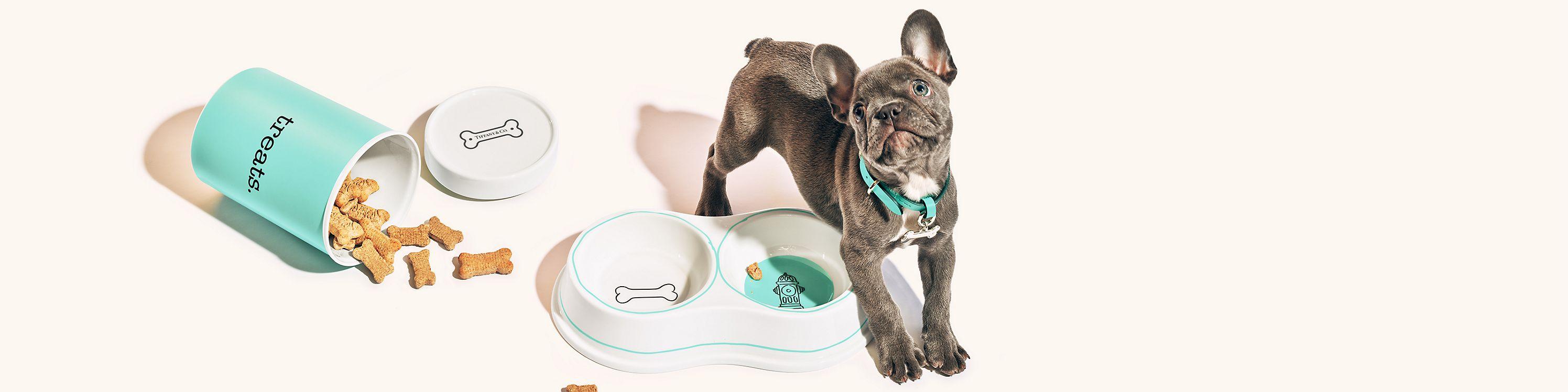 Shop Tiffany Pet Accessories