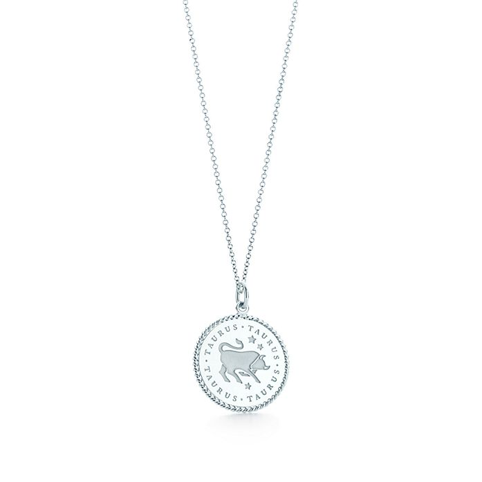 b867670fd Zodiac charm in sterling silver on a chain. All signs available ...