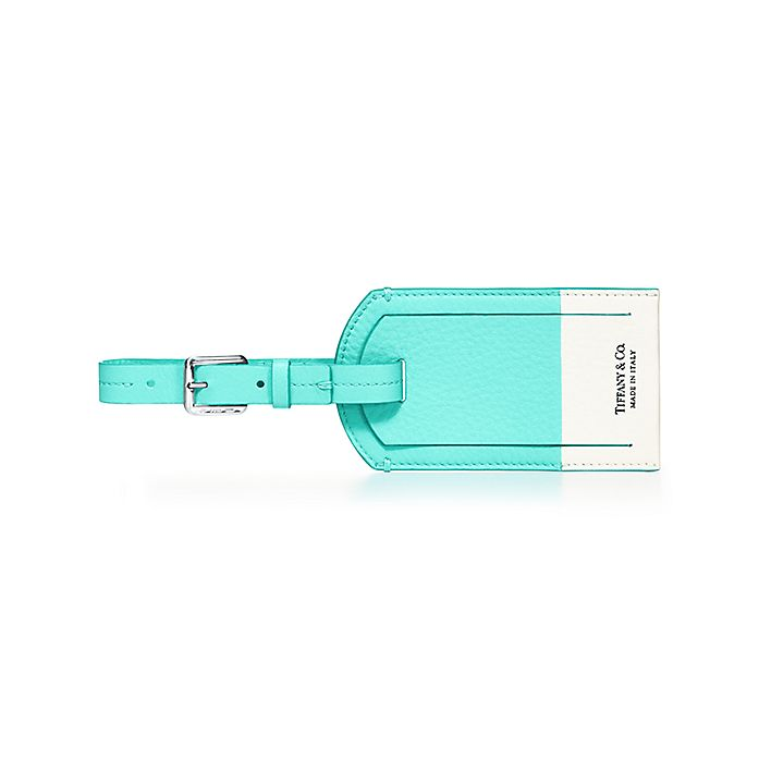 Color Block Luggage Tag In Off White And Tiffany Blue Grain