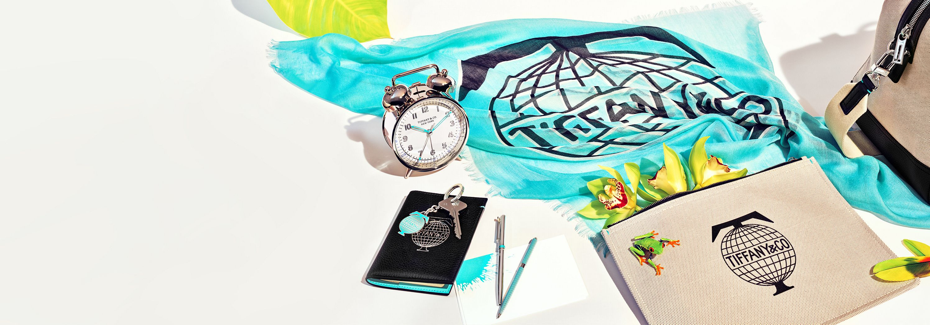 Tiffany & Co. Luxury Accessories