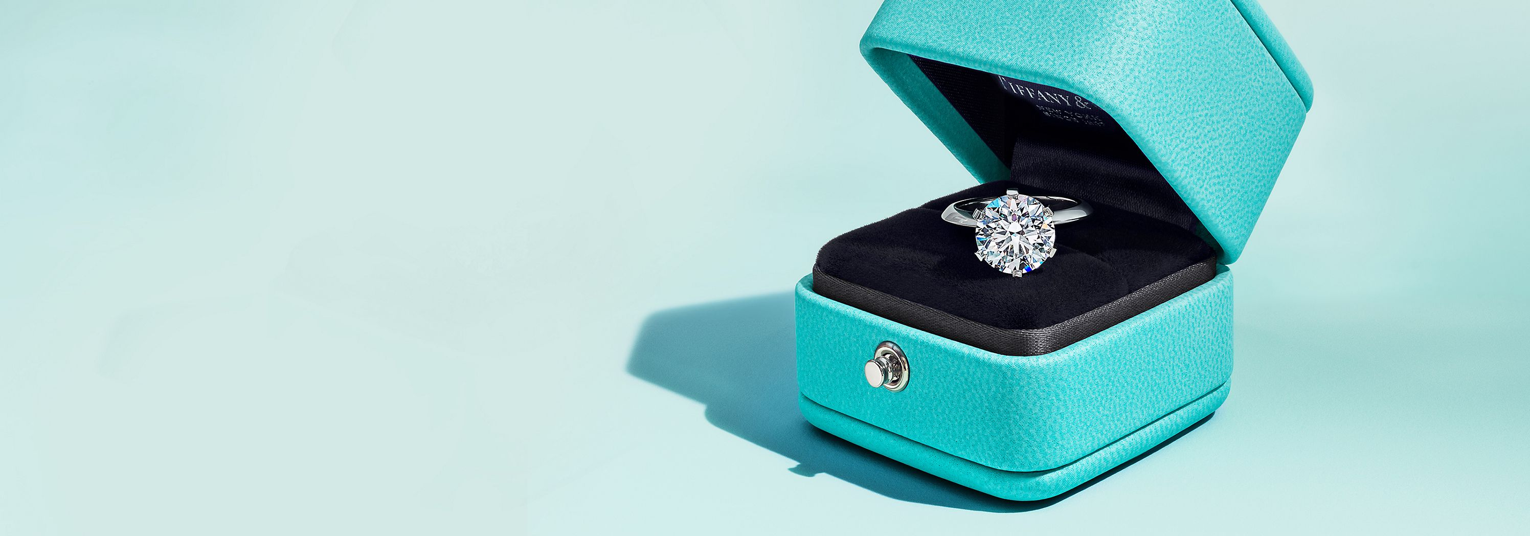 Tiffany & Co. Initiative zur Diamantquelle