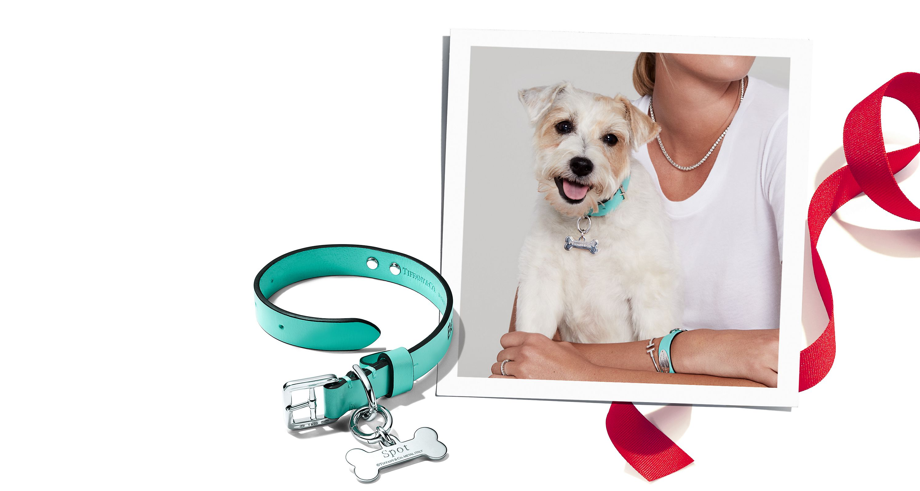 Browse Tiffany & Co. Pet Accessories