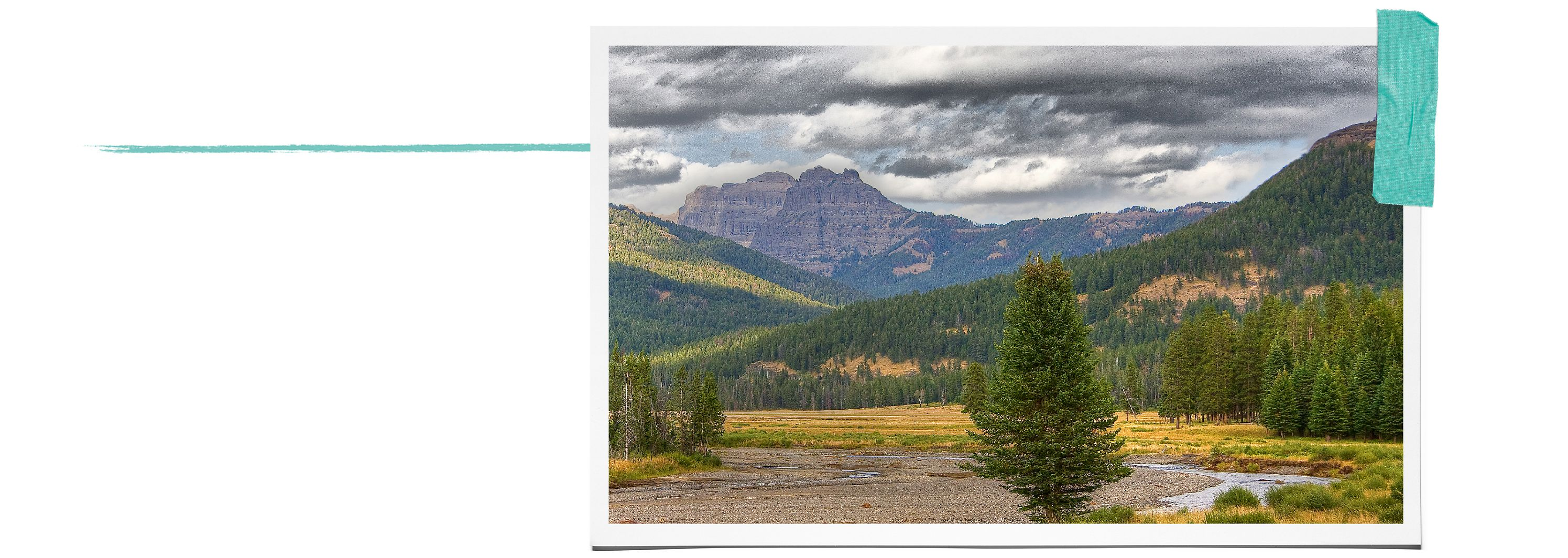 Tiffany & Co. and Yellowstone National Park