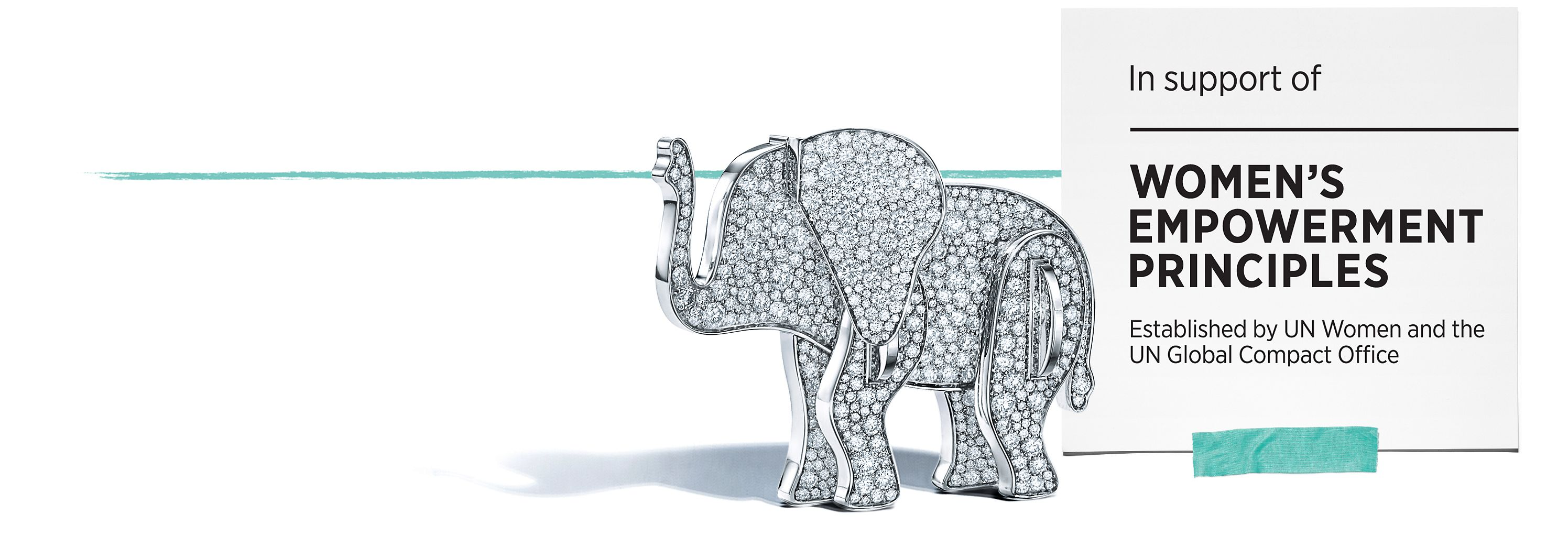 2017 Tiffany & Co. Save the Wild and the Wildlife Conservation Network