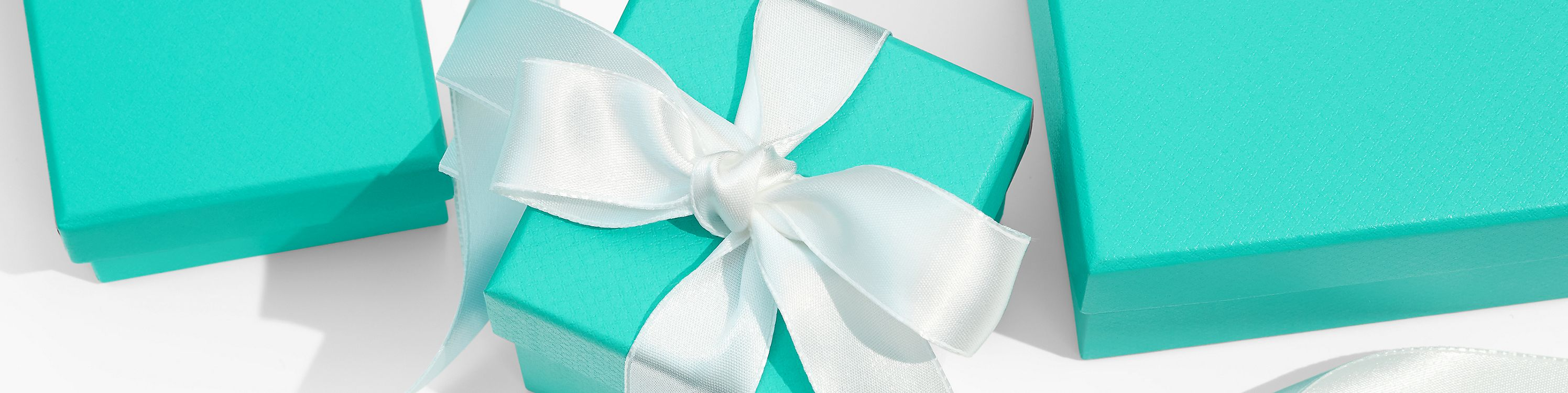 Tiffany & Co. 暢銷品