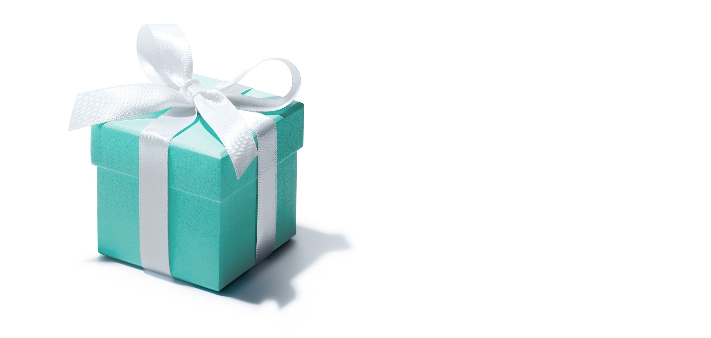 51099e91165 The Tiffany Blue Box® | Tiffany & Co.